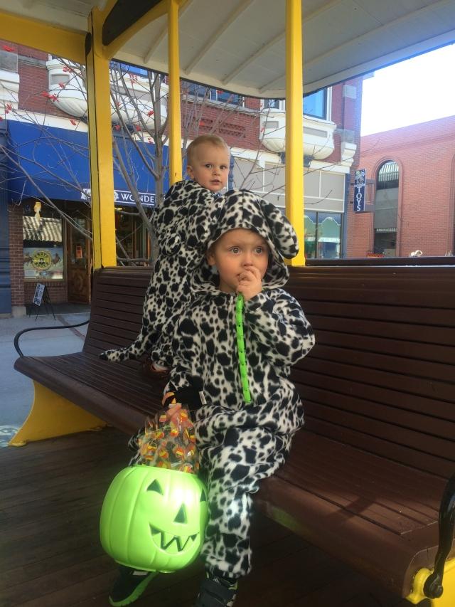 Trolley dalmatians